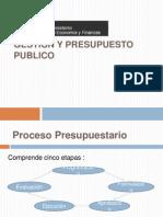 Proceso Presupuestario
