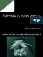 Surprises Du Monde Vivant IX
