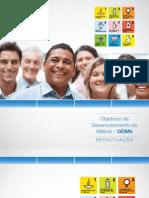 Objetivos de Desenvolvimento do Milênio - ODMS - Repactuação - Governo de Minas Gerais - ONU - Pnud