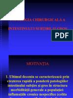 Patologia Intestinului