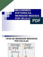 Mecanismos Efetores Da Imunidade Mediada Por Celulas
