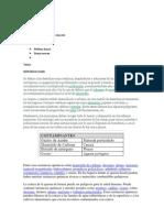 Ficha técnica del trabajo