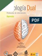 """1er Módulo del programa formativo """"Protocolos de intervención en Patología Dual"""" Depresión."""