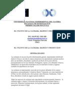 Universidad Nacional Experimental Del Tachira
