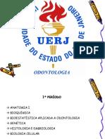 Curso de Odontologia Da Uerj