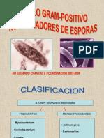 Bacilos No Esporulados b.k.-difterico