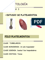 PRACTICA Platelmintos