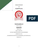 Seminar Report Initial