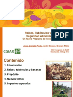 Raíces, tubérculos y bananas para seguridad alimentaria e ingresos