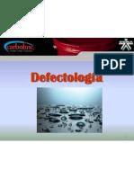 Defectología 2011