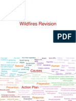 Wildfires Revision