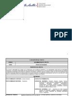 Formato Perfil Director