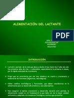 ALIMENTACION LACTANTE