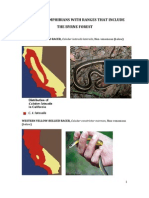 Reptiles And Amphibians With Ranges That Include The Byrne Forest - Santa Cruz County, California