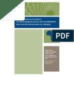 Implications sociales et environnementales du développement des nanotechnologies en Amérique latine et dans les Caraïbes