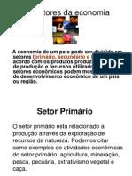 Os Setores Da Economia 05