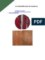 Manual para la identificación de maderas forestales