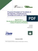 Programa Estratégico de Necesidades de Investigación y Transferencia de Tecnología del Estado de Coahuila