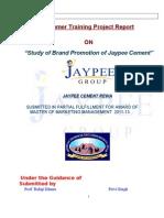Privi Singh j.p Cement Project - Copy