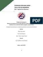 Trabajo de Investigacion de Quimicade Los Alimentos - Estabilidad Del Almidon