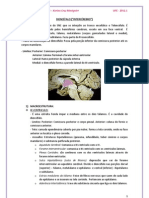 DIENCÉFALO. pdf