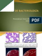 Atlas Bacteriologico.A