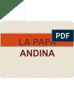Ppt Papa Andina[1]