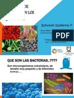 Un Mundo de Bacterias en Los Quesos