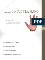 Tema 9 Anatomia de La Mano i
