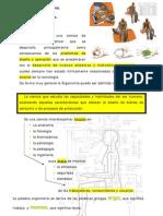 Tema 1- Generalidades 2009
