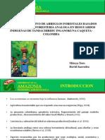 DISEÑO PARTICIPATIVO DE ARREGLOS FORESTALES BASADOS EN EL