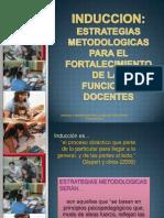 Induccion Estrategias Metodologicas Dirigidos a Los Docentes.2011..