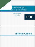Derma Hclx y Lesiones Elementales