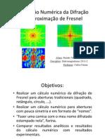 Simulação Numérica da Difração na Aproximação de Fresnel