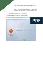 Manual Instalação BizAgi