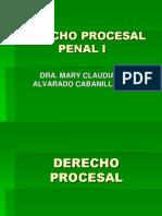 Derecho Procesal Penal i (2)