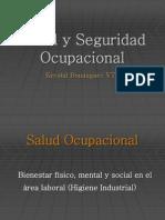 PROF. K. DOMINGUEZ 6. Salud y Seguridad Ocupacional