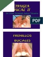 8 Frenillos Bucales