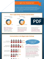 Agile 2012 Survey Infographic