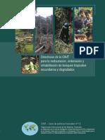 Directrices de La Oimt Para La Restauracion Ordenacion y Rehabilitacion de Bosques Tropicales Secundarios y Degradados