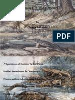 Anfibios Del Paleozoico