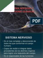 Sistema Nervioso y Reacciones Quimicas