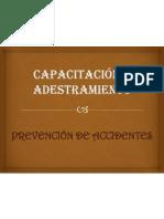 Capacitacion y Adestramiento