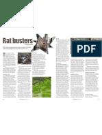 RT Vol. 10, No. 1 Rat busters