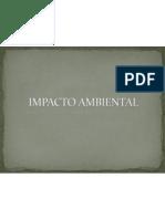 4 IMPACTO AMBIENTAL