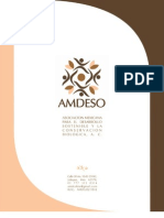 Carpeta Presentacion AMDESO AC_final