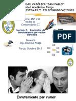 Capitulo 5 Protocolos de Enrutamiento Por Vector Distancia