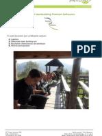 Raport Team Building Premium Softwares