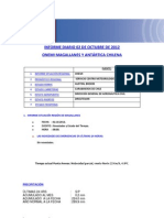 Informe Diario Onemi Magallanes 02.10.2012
