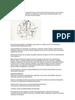 Circuitos - Concepto y Desarrollo